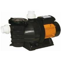 Bomba Para Piscina Jacuzzi 3F-M 1/3 Cv Monofásica 220V