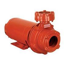 Bomba Centrifuga Para Incêndio Schneider Bpi-21 R 2 1/2 (*) 3 (123 Mm) Cv Trifásica 4 Voltagens - 20320077010
