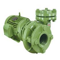 Bomba Mono Estágio Schneider Bc-21 R 1 1/2 (*)3 Cv Monofásica 220/440V Com Capacitor - 20320084302