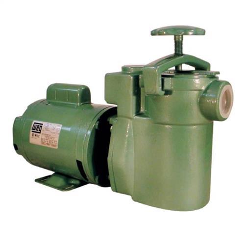 Bomba Para Filtro De Piscina Thebe Fr-12 1/2 Cv Trifásica 220/380V - 20370057002