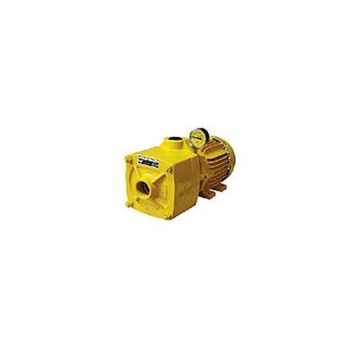 Bomba Centrífuga Multi Estágio Jacuzzi 15Ma2-T 1 1/2 Cv Trifásica 220/380V