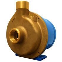 Eletrobomba Sanitária Rowa 15/1 S 1,25Hp Monofásico 220V Em Bronze