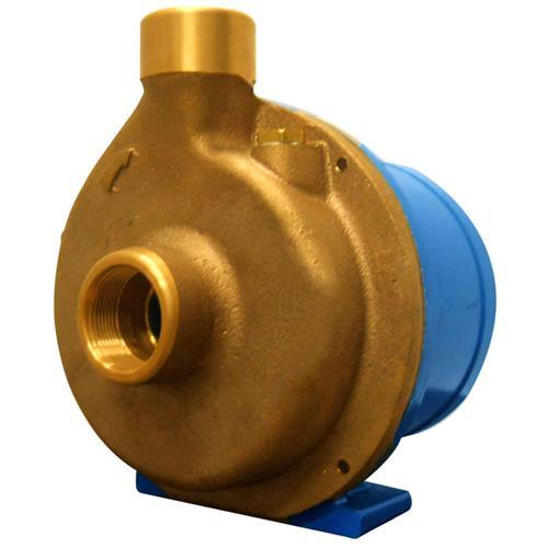 Eletrobomba Sanitária Rowa 20/1 S 1,25Hp Monofásico 220V Em Bronze