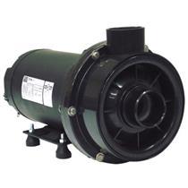 Bomba Para Hidromassagem Dancor Chs-22 1 1/2 Cv Trifásica 220/380V