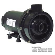 Bomba Para Hidromassagem Dancor Chs-22 3 Cv Trifásico 220V/380V