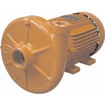 Bomba Monoestágio Jacuzzi 3Dm1 3 Cv Trifásica 220/380V