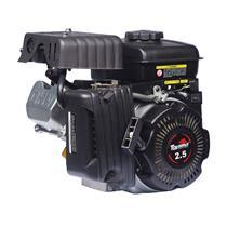 Motor Toyama Tf25fxw 2,5Hp À Gasolina