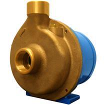 Eletrobomba Sanitária Rowa 10/2 S 0,50Hp Monofásico 220V Em Bronze